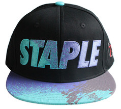 Staple World Renown Pigeon Brand Men's Aqua Snapback Hat NWT image 1