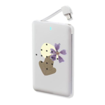 Nerdy Gifts Usb Charging Station Power Bank - $49.98