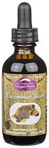 Dragon Herbs Eucommia Bark -- 2 fl oz - 60 ml - 100% All Natural, Certified Orga