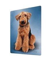 Airedale Terrier Dog Art Portrait Print Woven Throw Sherpa Plush Fleece ... - €103,60 EUR