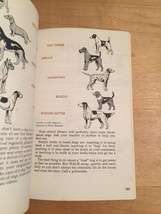 Vintage 50s Cub Scout 3 book set: Wolf, Lion, Bear (used) image 9