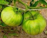 41qje9jrltl. sl1500  thumb155 crop
