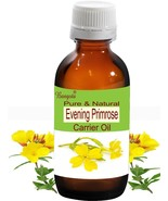 Evening Primrose Oil- Pure Natural Carrier Oil-5ml Oenothera biennis by ... - $8.71
