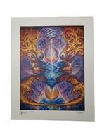 Jake Kobrin signed Blotter Art print psychedelic visionary art artwork - $29.69