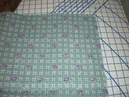 "Daisy Kingdom Morning Glory Plaid Donna Hrkman fabric 45"" Long  - $24.00"
