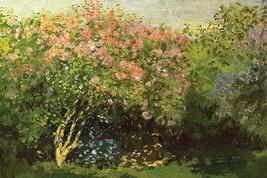 Lilacs in the Sun by Claude Monet - Art Print - $19.99+