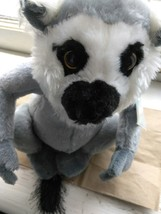 Webkinz Ringtailed Lemur HM369 Soft Plush Animal With Tag From Ganz Varmint - $10.35