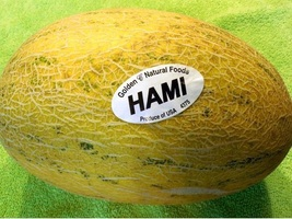 35 Pcs Organic Hami Ha Mi Melon Seeds E60, Honey Melon Super Sweet - $8.75