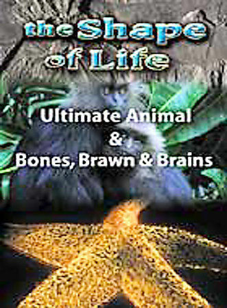 Primary image for The Shape of Life: Ultimate Animal / Bones, Brawn and Brains NEW DVD