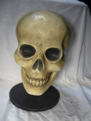 Bethany Lowe Bone Head Skull for Halloween no. TD0570