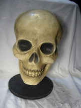Bethany Lowe Bone Head Skull for Halloween no. TD0570 image 1