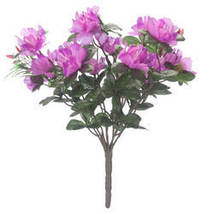 Azalea Bush by OakRidge-Purple - $10.99