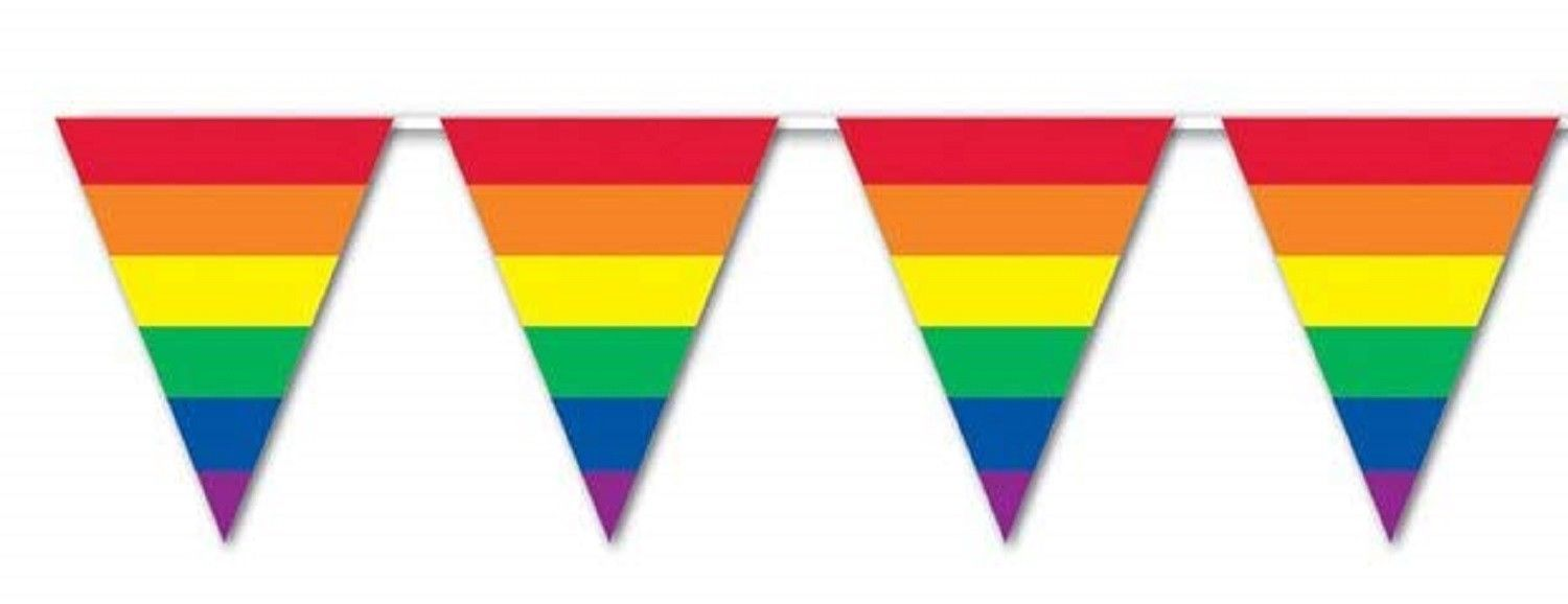 30 ft heavy duty Outdoor All Weather RAINBOW Pennant Banner flags decoration