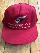 Vintage Red Wing Shoes 80s Usa Temple Alexandria Va Hat Cap Snapback Made In Usa - $58.41