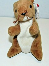 TY Beanie Baby Retired 1996 Nuts the Squirrel - $14.36