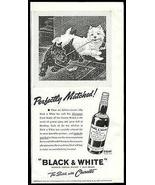 Scottie Dogs Perfectly Matched Black & White Scotch Morgan Dennis 1940 P... - $14.99