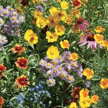 Bee Pollinator Mix Wildflowers Fresh Seed Flower Seed - Outdoor Living - Garden - $48.00+