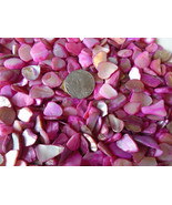 4 oz Pink Crushed Seashells Mosaics Vase Filler Sea Shells Craft Jewelry... - $4.99