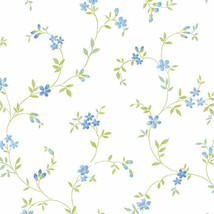 Seed Trail Wallpaper Blue, Green Norwall Wallcovering KE29908 - $34.99
