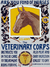 7940.Decoration Poster.Home Room wall fashion art design.Veterinary Corps.Horses - $11.30+