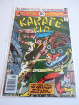 VTG 1976 DC COMICS MIKE GRELL KARATE KID DEC. 1976 NO. 3 ISSUE MAGAZINE - $16.83