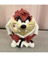Rare! Looney Tunes Tasmanian Devil Karate Taz Demons & Merveilles Fig St... - $366.30