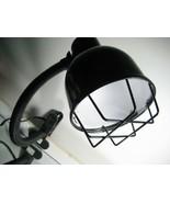 Reptile Heat Lamp / Clip On Light Fixture - $13.50