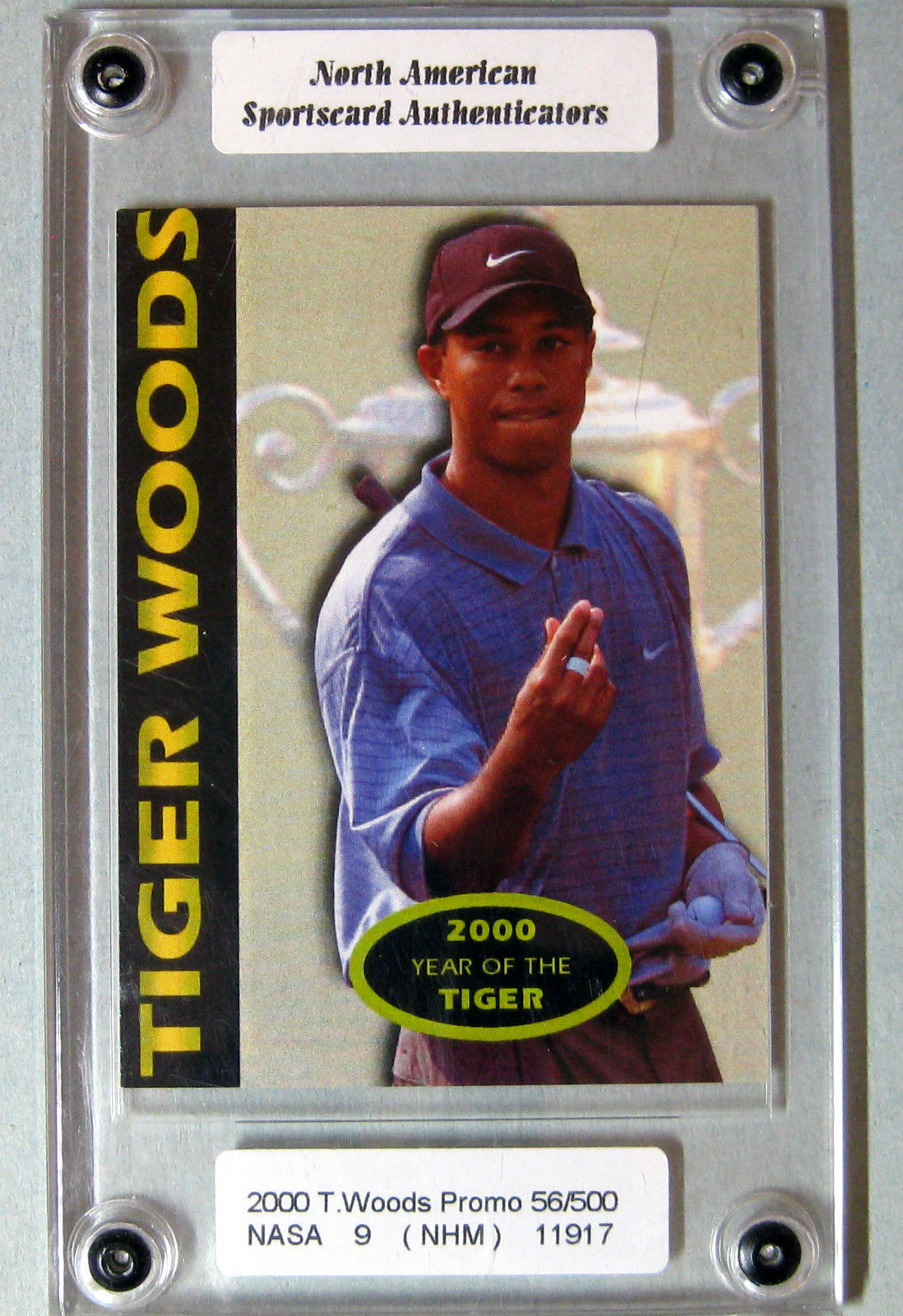 tiger woods 2000 toronto fall expo show and 50 similar items