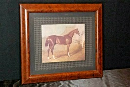 Wood Framed Picture of Horse AA20-2343AA Vintage