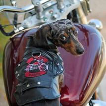 Biker Dawg Motorcycle Dog Jacket - Black - $39.99
