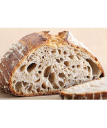 BEST TANGY SOUR SAN FRANCISCO SOURDOUGH STARTER YEAST SALLY - $6.00