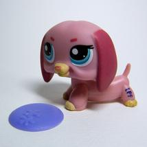 Littlest Pet Shop # 1306 Pink DACHSHUND Dog with Purple Frisbee LPS - $5.50
