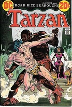 Tarzan Comic Book #217,   DC Comics Issue 1973 FINE  UNREAD - $8.79