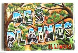 Greetings from Des Plaines FRIDGE MAGNET (2.5 x 3.5 inches) illinois sou... - $7.95