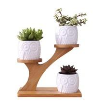 Flower Pots 1 Set Ceramic Owl Succulent Plant Garden Pot Home Nursery De... - $36.45