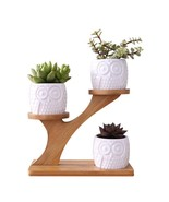 Flower Pots 1 Set Ceramic Owl Succulent Plant Garden Pot Home Nursery De... - $36.45