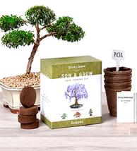 Bonsai Tree Seed Starter Kit Complete Bonzai Gardening Set Planting Pots... - $27.86