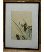 Framed Art Bird in Grass 20 x 14 1/2in Plastic Glass Paper - $19.94