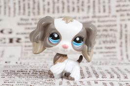 Littlest Pet Shop #2254 Grey Mocha & White Cocker Spaniel Puppy Dog LPS - $132,73 MXN