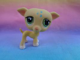 Littlest Pet Shop Yellow Greyhound Puppy Dog #875 Green Teardrop Eyes - ... - $64,03 MXN