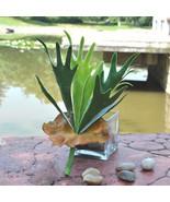 Astas grandes suculenta hierba hoja Artificial de plástico planta de flo... - $12.99