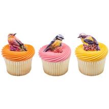 Birds CupCake Decoration ~12PCS~ Party Supplies Cake TOPPER KIT Spring  ... - $7.87