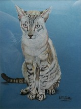 ANGELA M. HOLT - SIGNED ORIGINAL CRAYON DRAWING - A TABBY-POINT SIAMESE CAT - $101.47