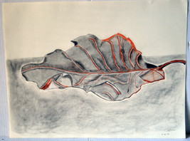 """1999 Color Drawing 23"""" Sketch Study Fall Leaf Autumn Home Wall Decor  - $18.99"""