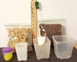 Mini Re-Potting Kit w/Square Pots by Sophie's Orchids - $35.95