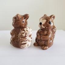 "Squirrel Salt & Pepper Shakers, Ceramic 2.5"" Woodland Animal Kitchen Accessory image 6"