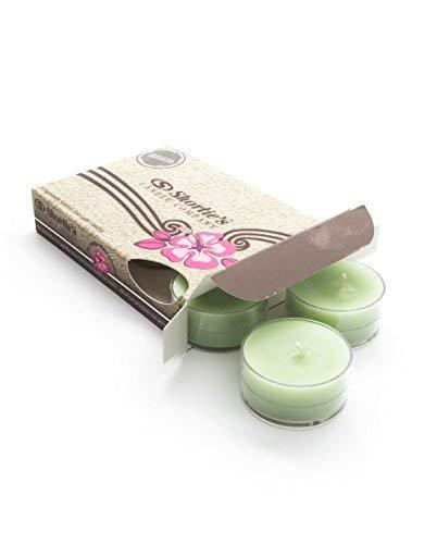 Primary image for Shortie's Candle Company Mistletoe Moments Green Tea Light Candles 6 Pack - High