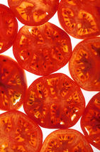 SHIP FROM US 200 Red RUTGERS TOMATO Lycopersicon Globe 8oz Seeds SBR4 - $12.00