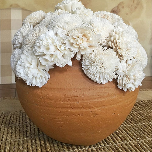 Primary image for Terracotta Pot with Cream Sola Flowers