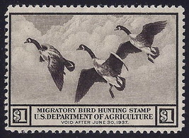 """RW3 - $1 F-VF """"Canada Geese"""" Duck Stamp Mint NH Cat $350  - $169.99"""